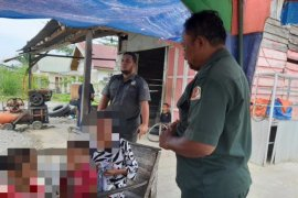 Terkena razia WH, IRT di Nagan Raya mengaku kepanasan pakai jilbab