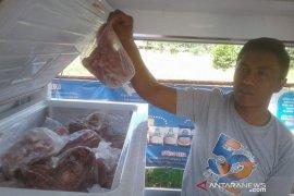 Bulog Bengkulu sediakan stok daging beku 12 ton