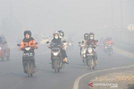 Kabut Asap Di Banjarbaru