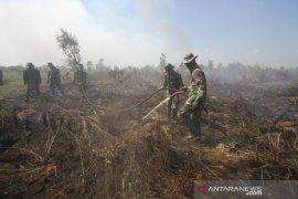 Pemadaman Kebakaran Hutan Dan Lahan