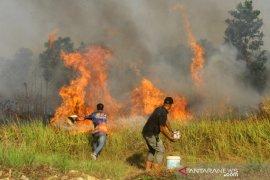 Upaya Pemadaman Kebakaran Hutan Dan Lahan