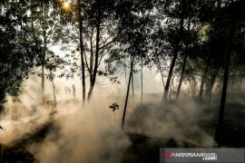 Kebakaran lahan Soak Bato Ogan Ilir Page 1 Small