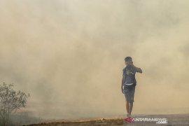 Kebakaran lahan Soak Bato Ogan Ilir Page 2 Small