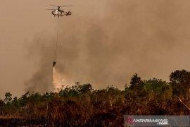 Kebakaran lahan Soak Bato Ogan Ilir Page 3 Small