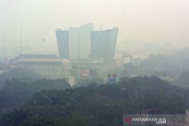 Gawat, kualitas udara di Riau kategori berbahaya