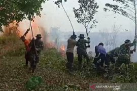 Kebakaran lahan terjadi di tiga titik di Solok Selatan