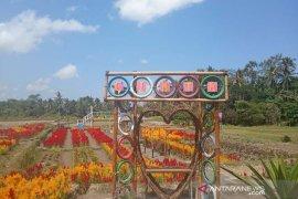 """Pemerintah-DPRD  diminta promosikan Taman """"Belayu Florist"""" Tabanan"""