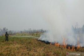 Karhutla mendekati SMPN 15 Banjarbaru berkobar lagi
