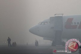Penerbangan di Palangka Raya hampir lumpuh karena kabut  asap