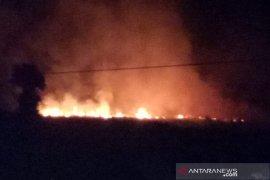 Kebakaran lahan di Pondok Kelapa diduga untuk membersihkan kebun