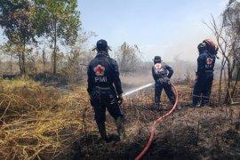 PMI kerahkan relawan untuk atasi karhutla dan kabut asap