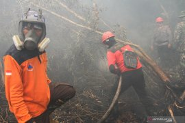 Anies kirim bantuan, Satgas Karhutla Riau: Kami belum butuh personel dari Jakarta