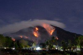 Kebakaran hutan dan lahan melanda Gunung Ile Mandiri Flores Timur