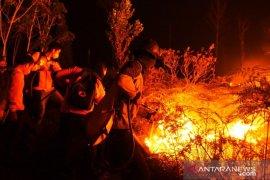 Ratusan Hektare Hutan dan Lahan Terbakar di Kutai Barat