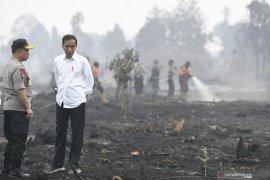 Presiden Jokowi  diharapkan reformasi manajemen pencegahan karhutla