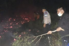 15 hektare lahan di Tapteng terbakar