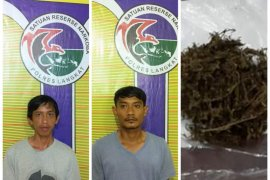 Kedapatan memiliki ganja, dua narapidana Lapas Langkat ditangkap