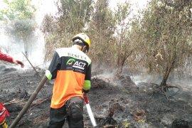 ACT: Kabut asap di sebagian Sumatera dan Kalimantan sangat berbahaya
