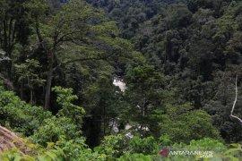 Lindungi bumi, PLTA Batang Toru serukan kurangi emisi karbon