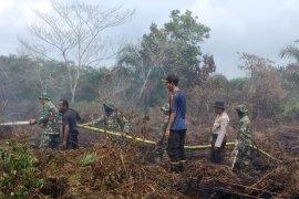 Dua hektare lahan gambut di Aceh Barat  terbakar