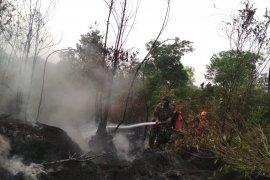 Patroli hutan kawasan Tahura Sultan Thaha diintensifkan