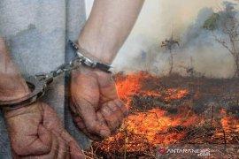 Kakek 75 tahun ditangkap polisi sebagai tersangka pembakar lahan Pekanbaru