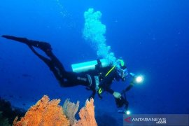 Pemkot Sabang sebut Aceh Internasional Diving wadah promosi wisata bahari