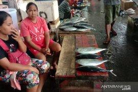 Harga ikan cakalang segar di Ambon Rp110.000 per ekor