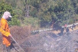 Di Gunung Semeru kebakaran hutan meluas capai 60,4 hektare