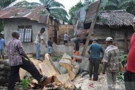 Rumah janda rusak ketimpa pohon kapuk