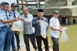 DPKP Aceh Tamiang kirim empat personel pelajari teknik budidaya  udang