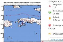 Serangkaian gempa kembali guncang Ambon
