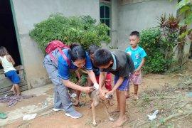 Antisipasi rabies, Kabupaten Landak siapkan 7.000 dosis