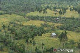 Ratusan hektare sawah di Mukomuko terlambat tanam