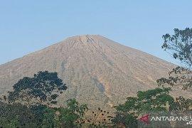 Pariwisata Lombok-Sumbawa dipromosikan di Australia
