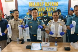 Tim Gabungan Lanal Banten gagalkan penyelundupan benih lobster senilai Rp17,8 miliar