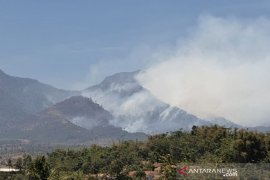 Kawasan hutan dan lahan di pegunungan Malabar Bandung terbakar
