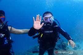 Sabang jadi pusat Aceh Diving Internasional Festival Championship