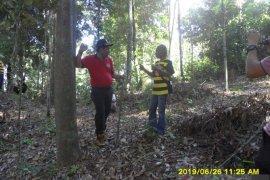Dishut Babel rintis usaha masyarakat berbasis pemanfaatan potensi hutan