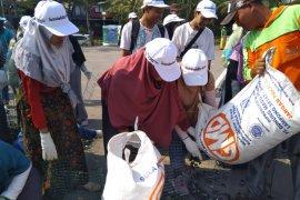 3 ton kulit Kerang hijau ditebar di Ancol, upaya jernihkan Teluk Jakarta