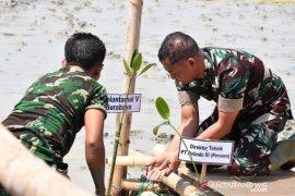Danlantamal V bersama prajurit ikut penanaman mangrove HUT ke-74 TNI