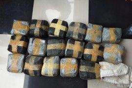 BNN bekuk oknum PNS Tarakan jaringan narkoba internasional