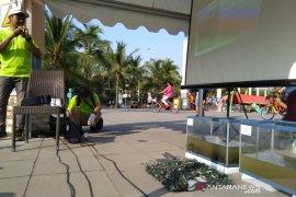 Kerang Hijau 'senjata' alami jernihkan Teluk Jakarta