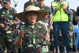 Pangdam I/BB: Hutan mangrove Indonesia terluas di dunia
