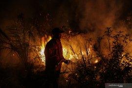 Titik panas di Sumatera melonjak jadi 543, Pekanbaru kembali berasap