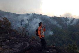 BPBD Jawa Barat: Kebakaran lahan di Kabupaten Bandung capai 226 hektare