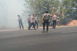Kebakaran hebat  di Jalintim Mesuji Lampung  Perbatasan Provinsi Sumatera Selatan Page 3 Small