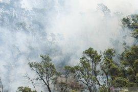 Kebakaran di Kawah Putih mulai padam, namun api menjalar ke Pasirjambu