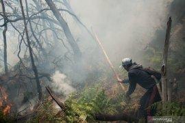 Pemicu kebakaran lahan di Kawah Putih Ciwidey diduga puntung rokok