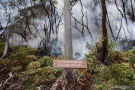 Kebakaran lahan di Kawah Putih Ciwidey capai 15 hektare
